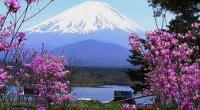 ทัวร์ญี่ปุ่น เที่ยวญี่ปุ่น  โตเกียว  เกียวโต โอซาก้า  7 วัน