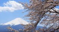 ทัวร์ญี่ปุ่น เที่ยวญี่ปุ่น  โอซาก้า  โตเกียว 7 วัน