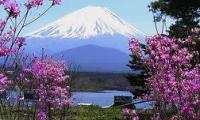 เที่ยวญี่ปุ่นแบบง่ายๆ