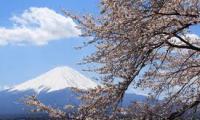 เที่ยวญี่ปุ่นราคาถูก
